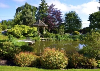 3 Best Landscaping Companies in Abbotsford, BC