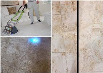 3 Best Carpet Cleaners in Amarillo, TX