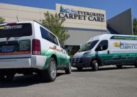 3 Best Carpet Cleaners in Reno, NV