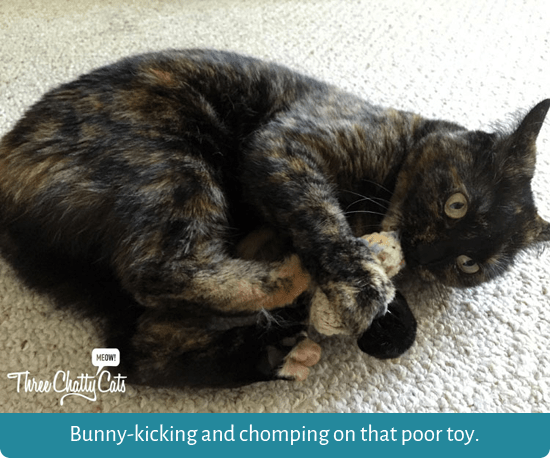 Bunny-kicking and chomping on that poor toy.