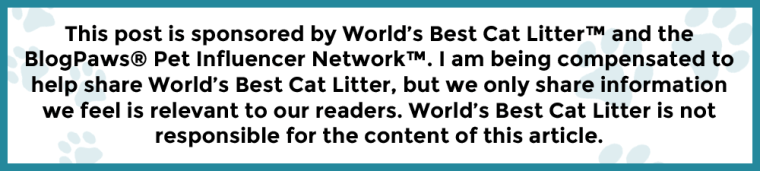 BlogPaws Disclaimer