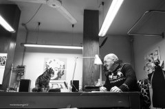 "Dressmaking shop cat Pepe | ""C-AT WORK"" by Marianna Zampieri"