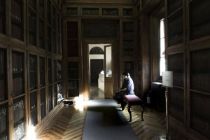"Library cat Teresa   ""C-AT WORK"" by Marianna Zampieri"
