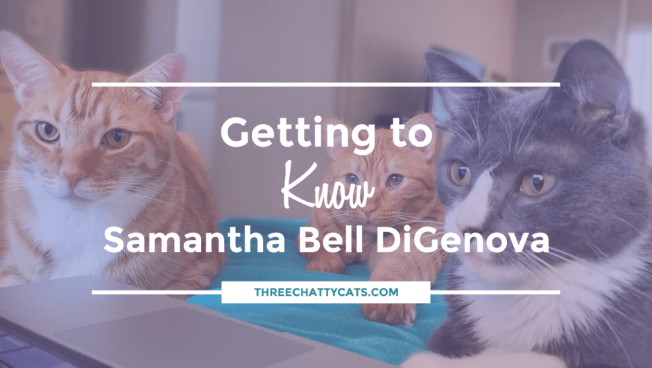Getting to Know Samantha Bell DiGenova