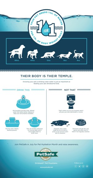 PetSafe Infographic