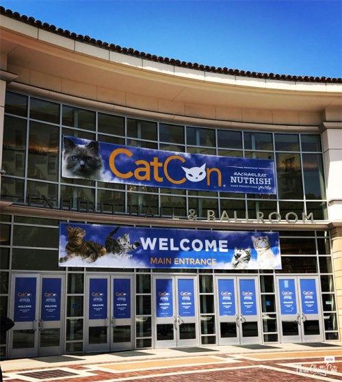 CatCon 2017