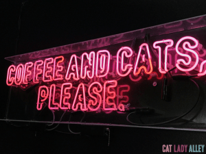 Coffee and Cats, Please sign