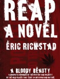 When We Fell In Love – Eric Rickstad