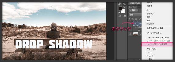 drop-shadow557