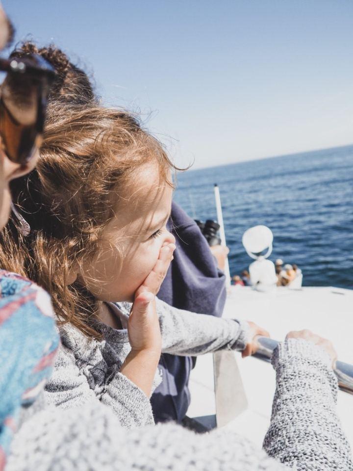 Rencontrer les baleines à bosses, Boston Threeminds