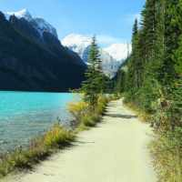 Family-Friendly Fall Hike For All Hiking Abilities - Lake Louise Shoreline