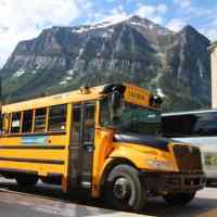Hop On Banff - 9 Reasons To Book This Family-Friendly Tour.