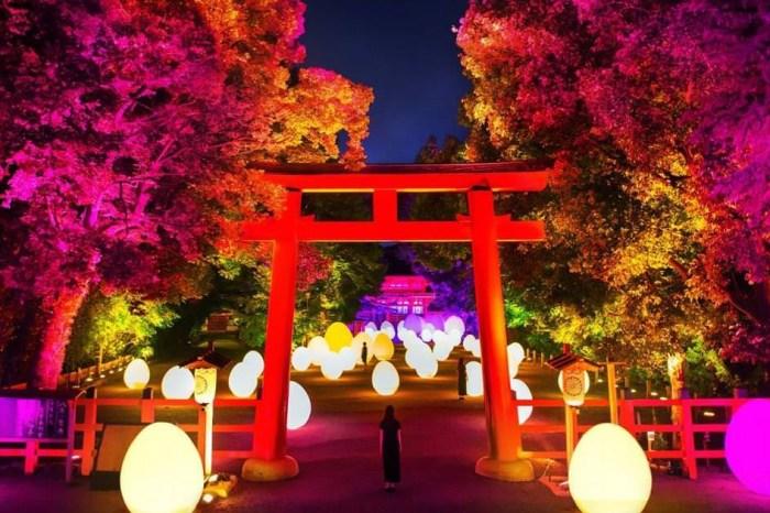 【期間限定】京都景點:2021京都下鴨神社糺の森の光の祭典 x teamLab