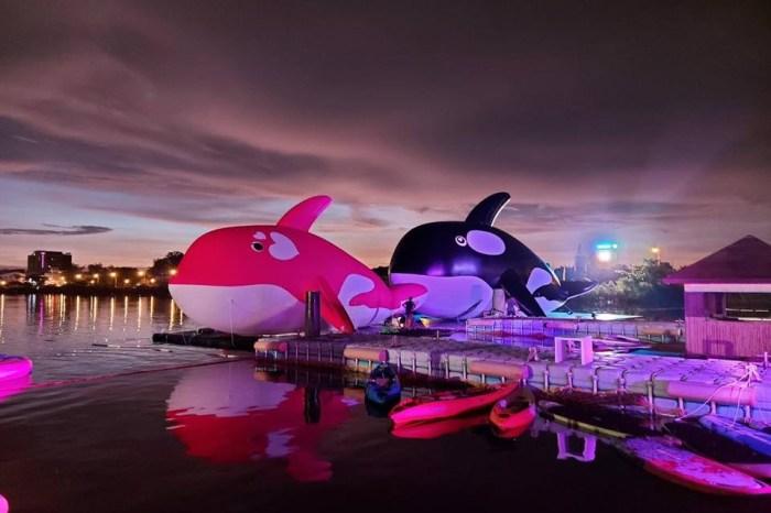 【台南景點】全球最大虎鯨裝置藝術:安平虎鯨亮晶鯨ORCA GO!嘉年華