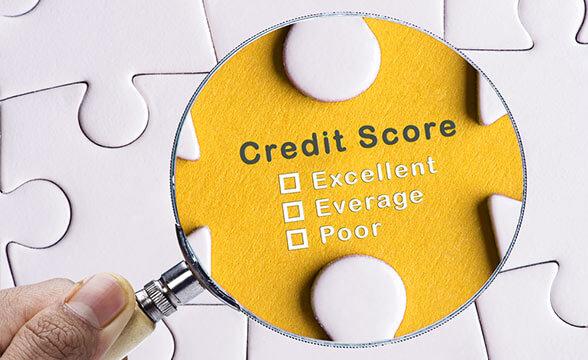 Credit Check Software