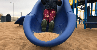 EIPS closes all school playgrounds