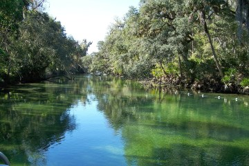 blue springs river