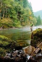 fall mountain creeks