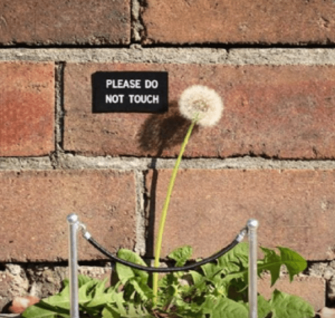 These Vandalism Acts Are Damn Funny. You Have To See These Pictures!