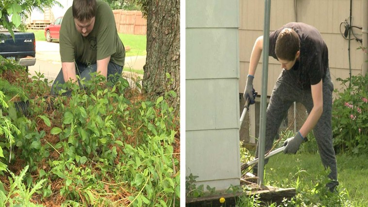 School Gives Students PE Credits for Helping Elderly and People With Disabilities Do Yard Work