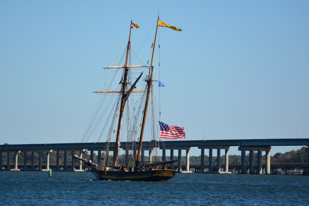 Pride of Baltimore II heading out for a sail. Photo by Mike Hartley