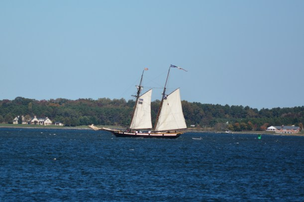 Schooner making way. Photo by Mike Hartley