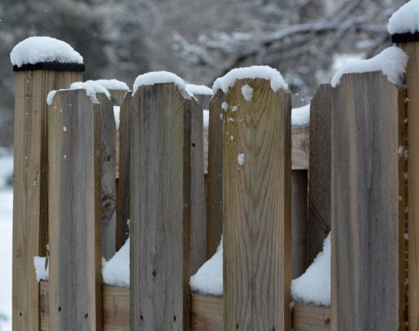 All I want to see is beach towels over my pool fence, Not snow. Photo by Mike Hartley