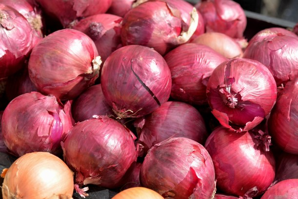 Onions Photo by Mike Hartley