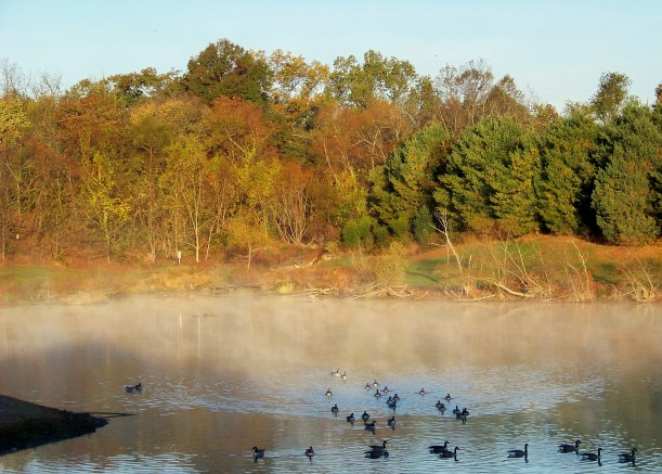 A beautiful morning in Howard County. But aren't they all? Photo by Mike Hartley