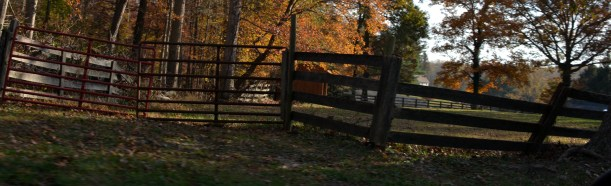 Redefine fence line. Photo by Mike Hartley