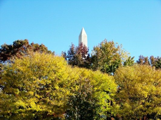 Monument Tip Photo by Mike Hartley