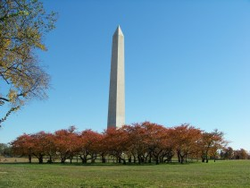 Monument and trees Photo by Mike Hartley
