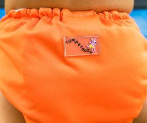cloth diaper pin