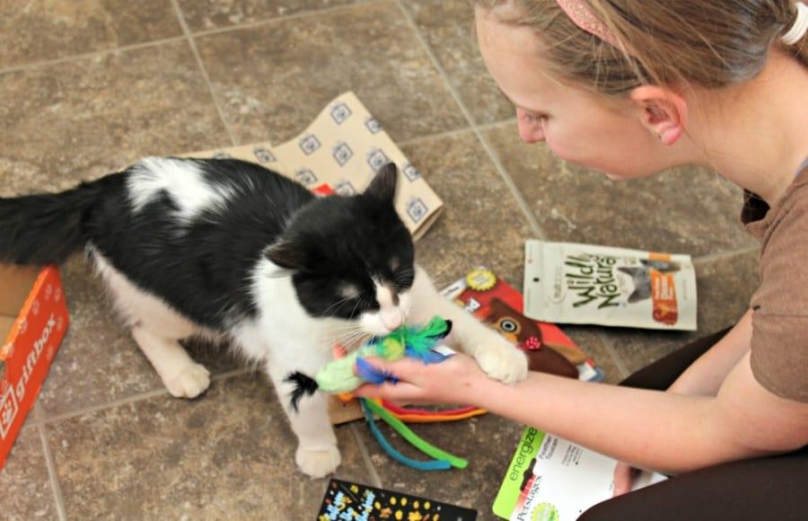 PetGiftBox - Pet Subscription Box {+ Discount}