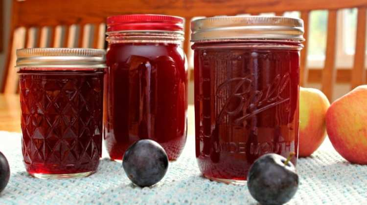 Plum Apple Jelly Recipe {+ Ball Canning Giveaway}