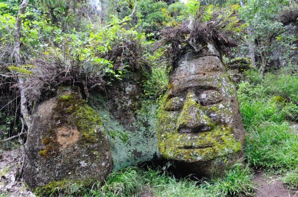 Stone Face, Floreana Island