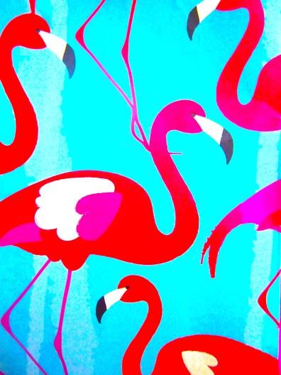 Flamingo vibes