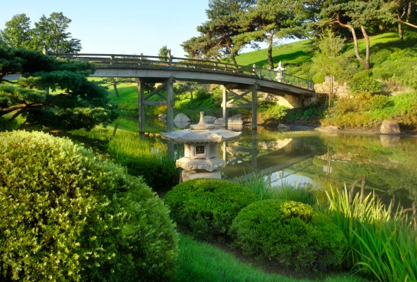 Chicago-Botanical-Garden-Malott-Japanese-Garden.jpg