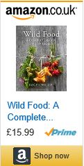 foraging forager free food forage wild food a complete guide