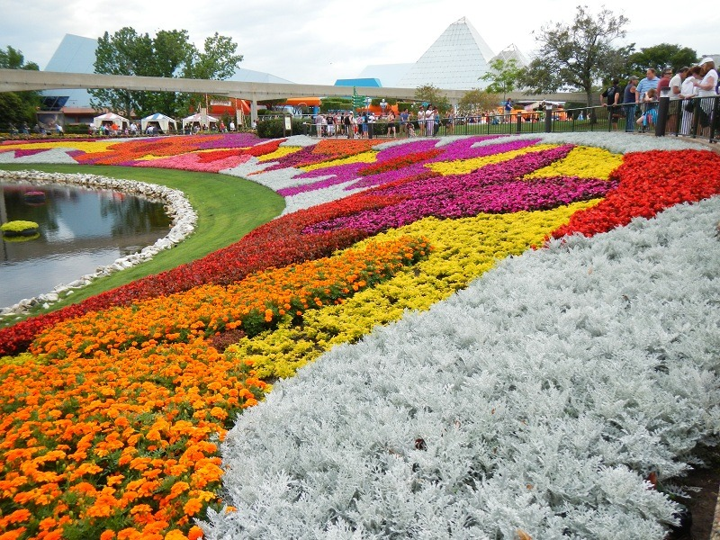 Epcot is FULL of color during the Flower & Garden Festival