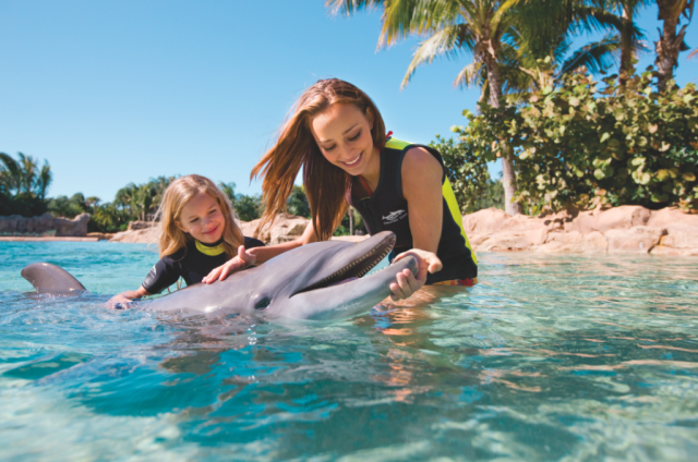 Discovery Cove at SeaWorld Orlando extends exclusive fall offer to Florida residents