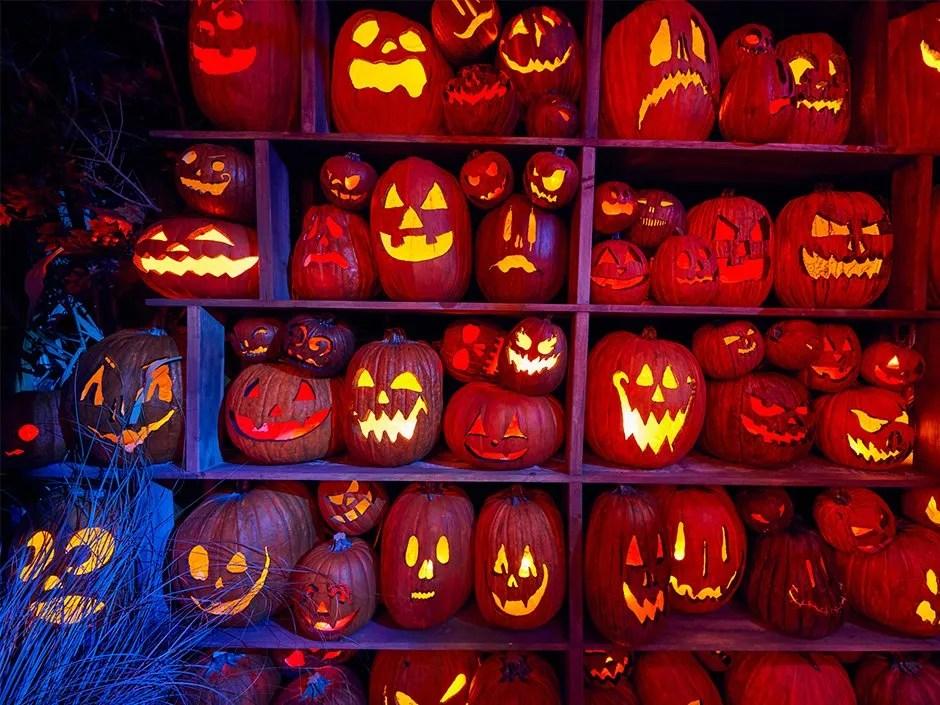 HHNForever Pumpkin Carving Stencils – Discover Universal