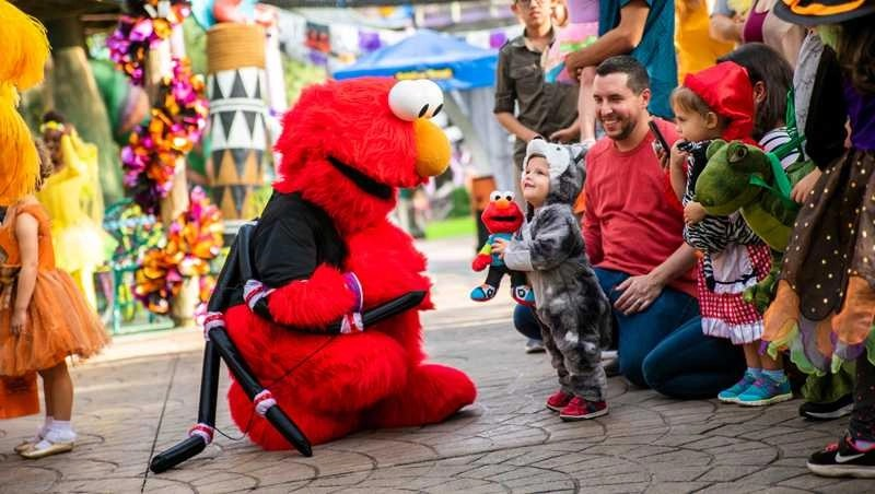 Fall fun for the whole Family at Busch Gardens Tampa Bay