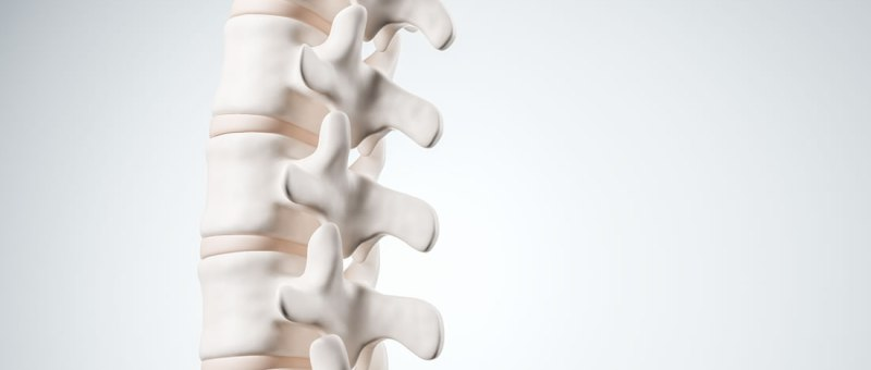 Almonte chiropractic care