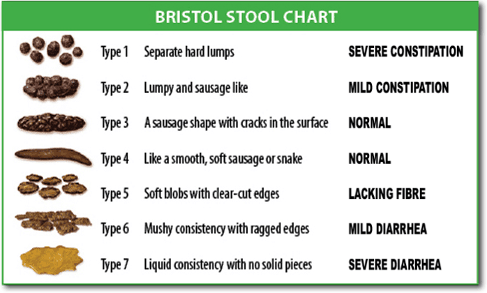 bristol stool chart for understanding the texture of your stool