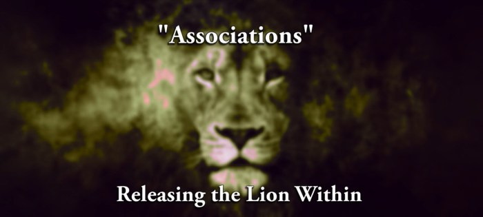 Releasing Lion Within   Associations
