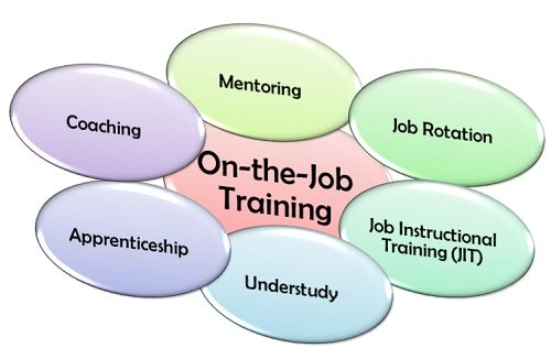 How On-the-Job Training Brings You Value