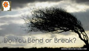 A tree bends when buffeted by the wind, that way it doesn't break