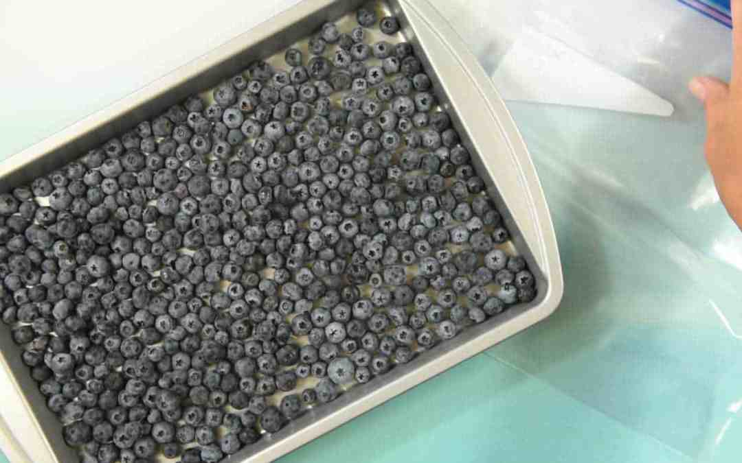How to Freeze Blueberries (or any other small things)