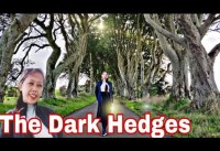 The Dark Hedges A popular stop on Game of